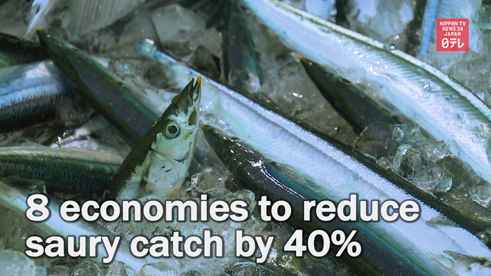 Japan and 7 other economies to reduce saury catch by 40%