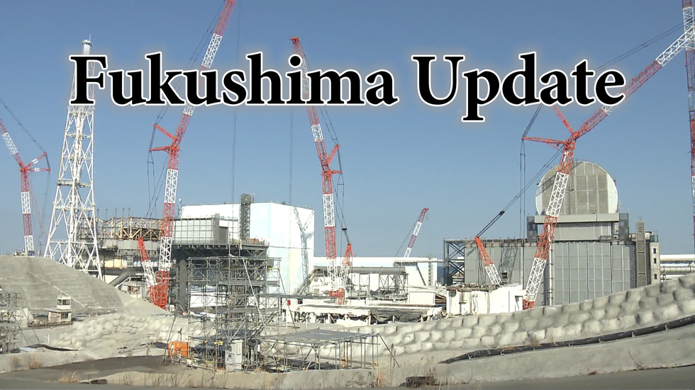 Looking inside Fukushima reactor building
