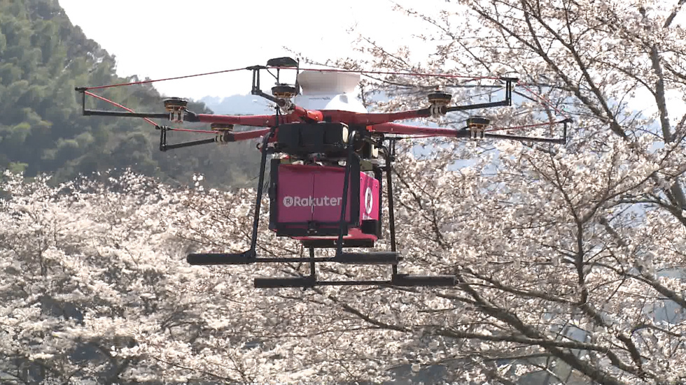 Paving the way for delivery drones