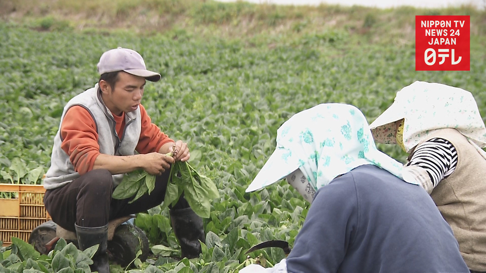 Japan approves policies to help foreign workers