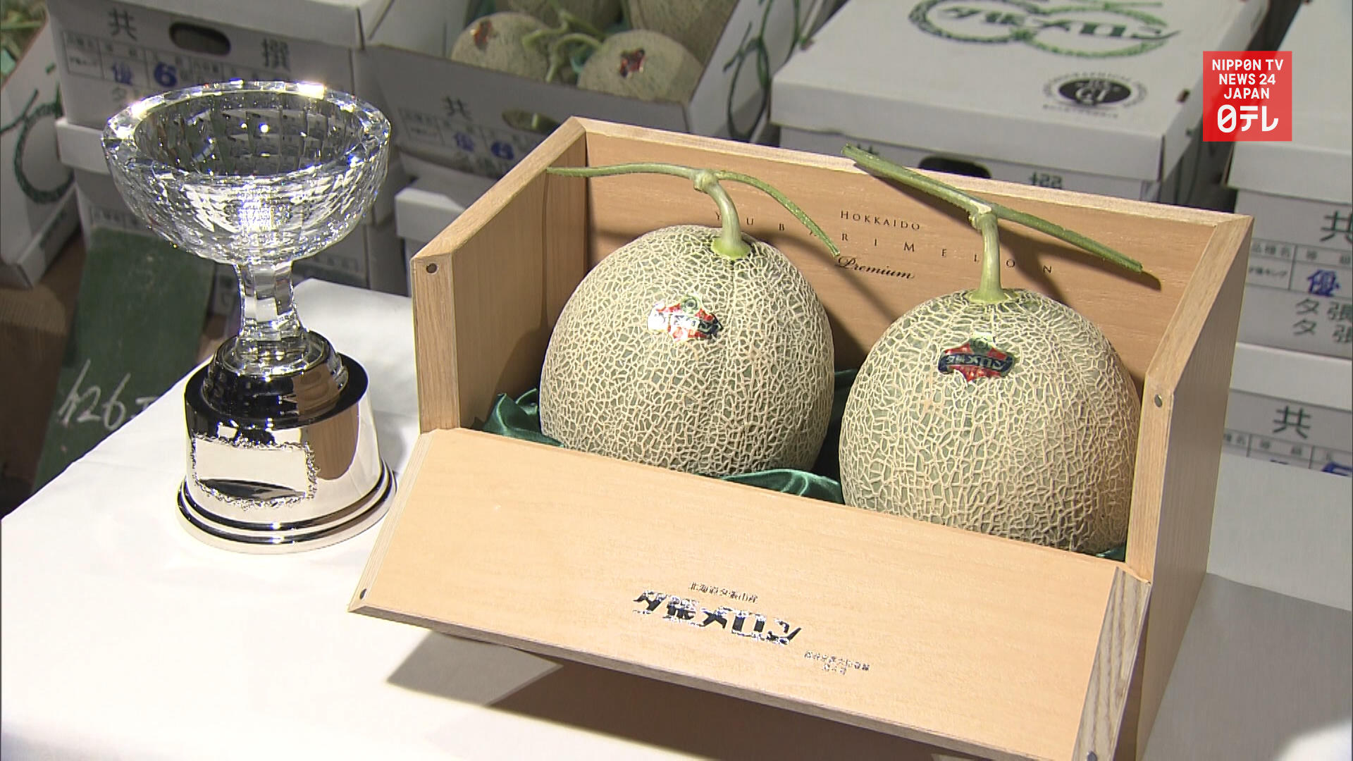 Price of high end Yubari melon fetches one 40th of last season's price