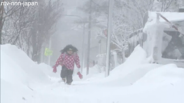 Spring succumbs to winter blizzard