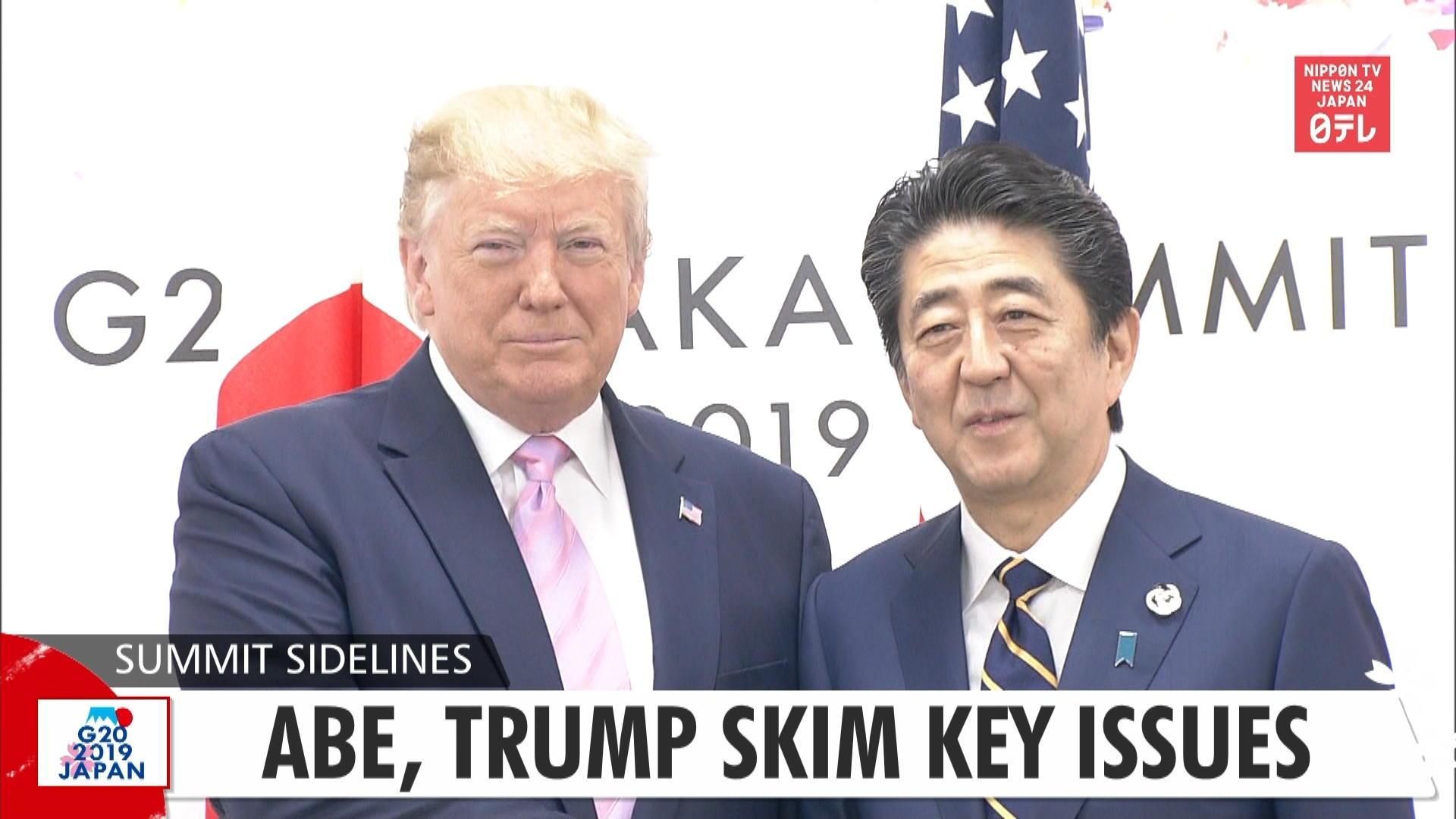 G20: Abe, Trump skim key issues