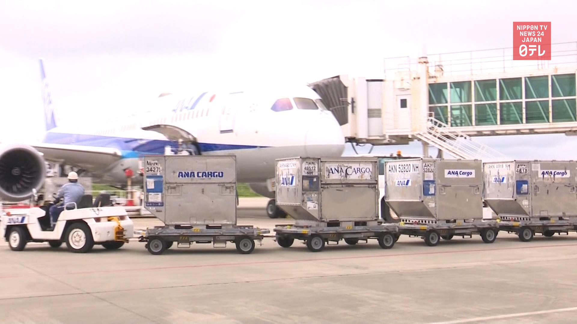 Okinawa island charters flight to deliver products to Tokyo