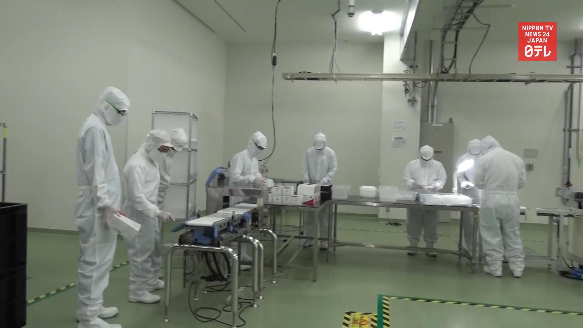Japanese electronic giant begins shipping masks