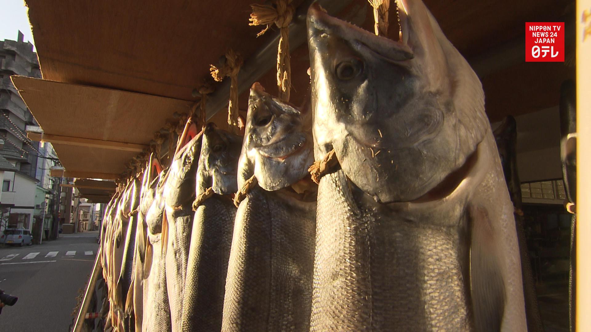 Sun-dried salmon