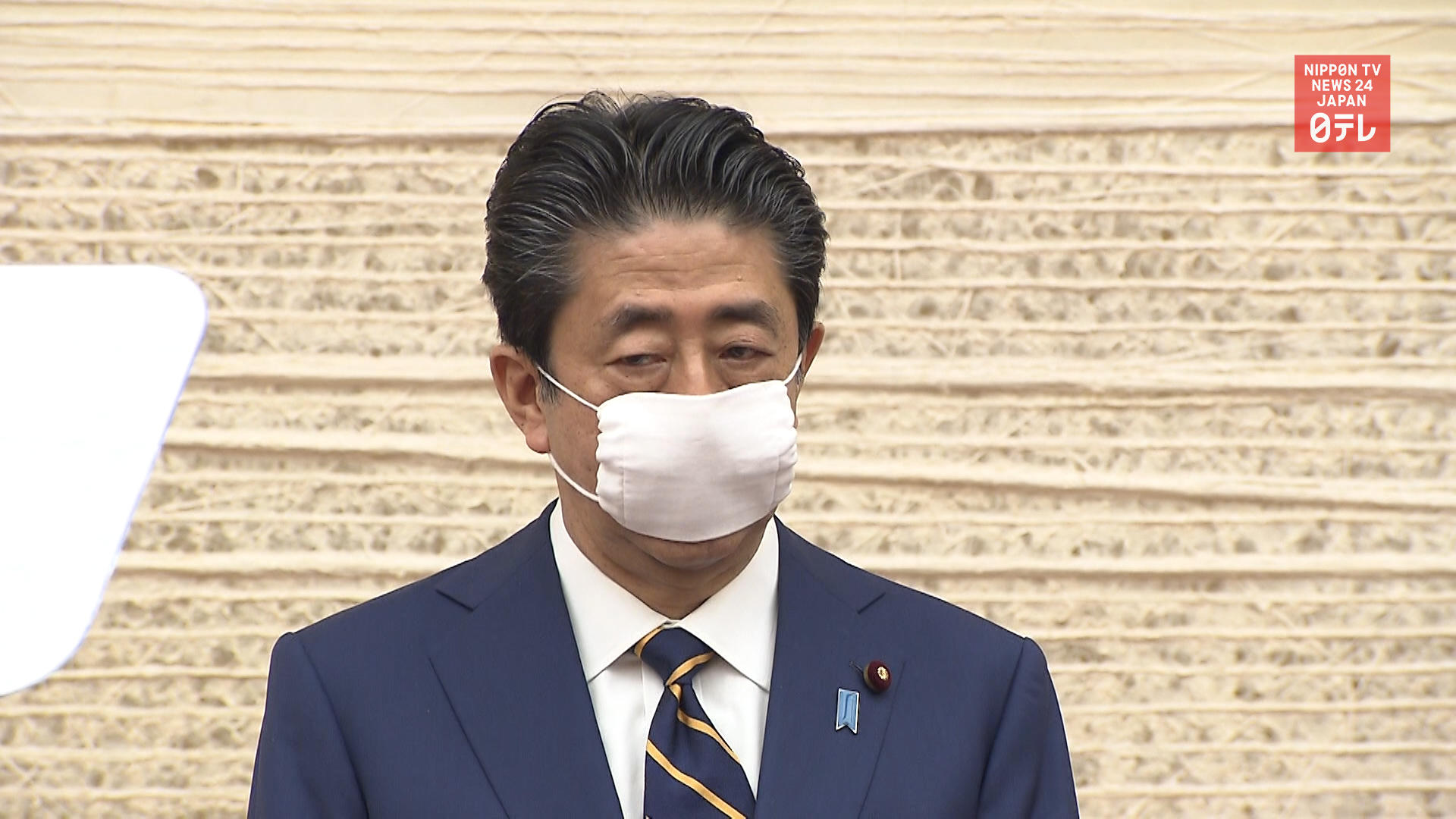 Over 80 percent say Japanese govt. too slow: poll