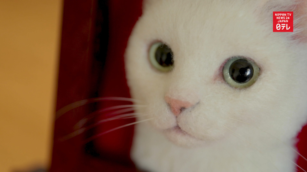 Hyper-realistic cat art helps people cope with loss