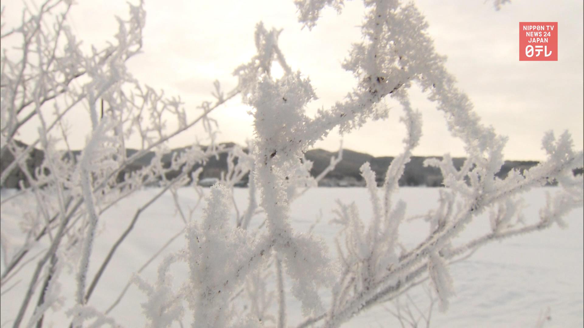 -25°C temps in Hokkaido