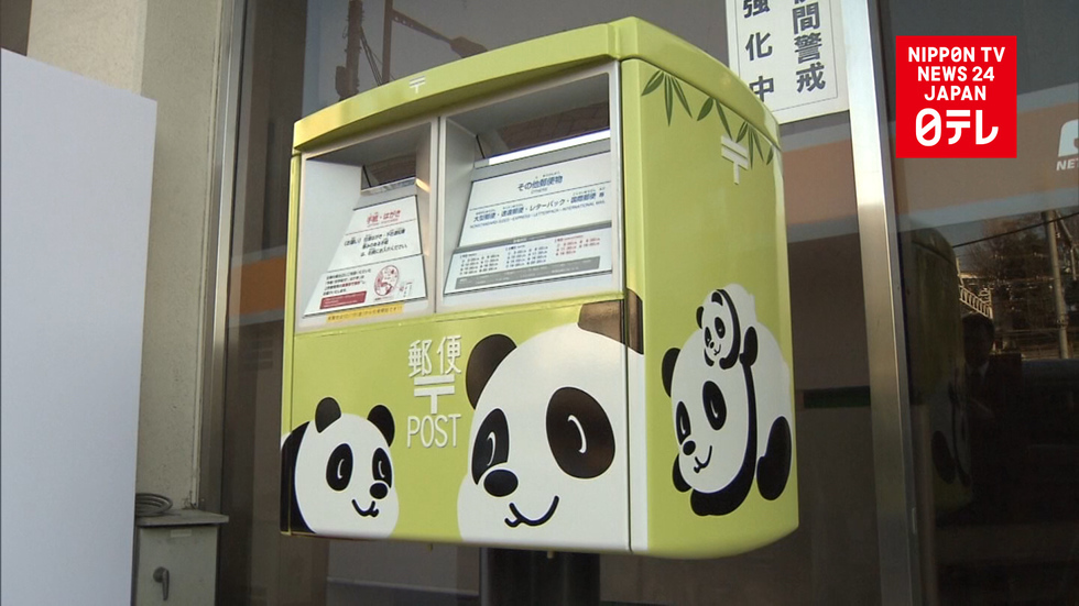 Panda-monium goes postal