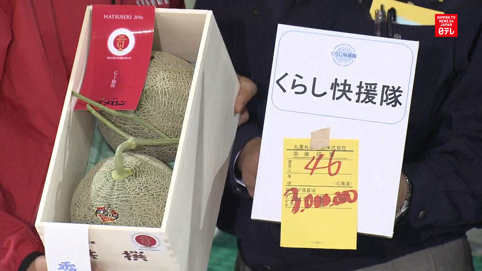 Pair of melons fetch record price