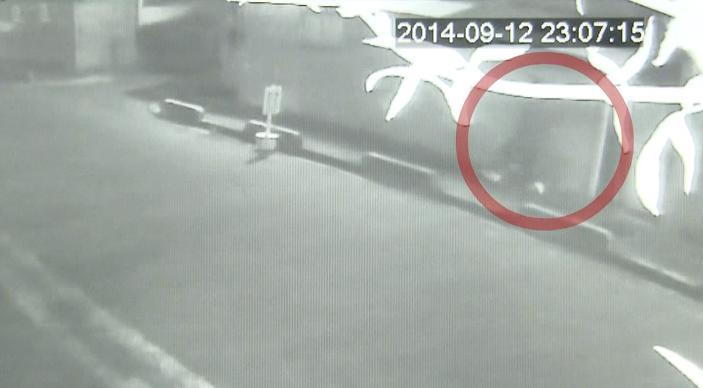 Purse-snatching caught on surveillance camera