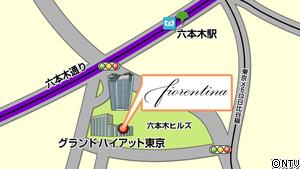 fiorentina_map.jpg