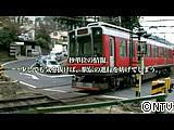 20110510-11.jpg